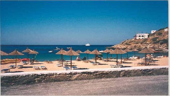 The Purple Pig & Stars Camping: The Beach of Mylopotas.Great for water sports.