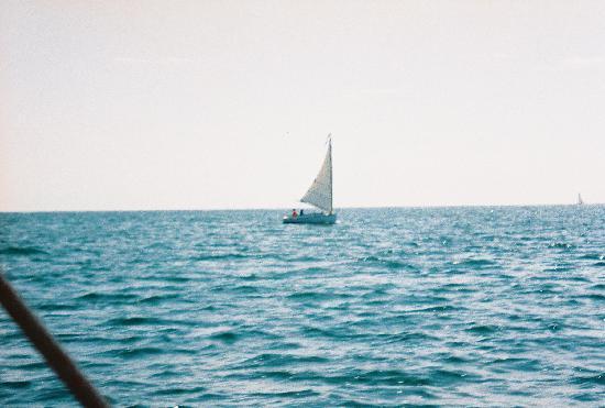 Inn at Lewis Bay: Cat Boat View