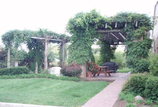 Fairfield Inn & Suites Indianapolis East: The beautiful vine walkway outside-love it!