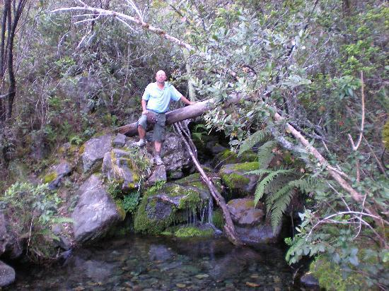 Pico Duarte: Abundant potable water