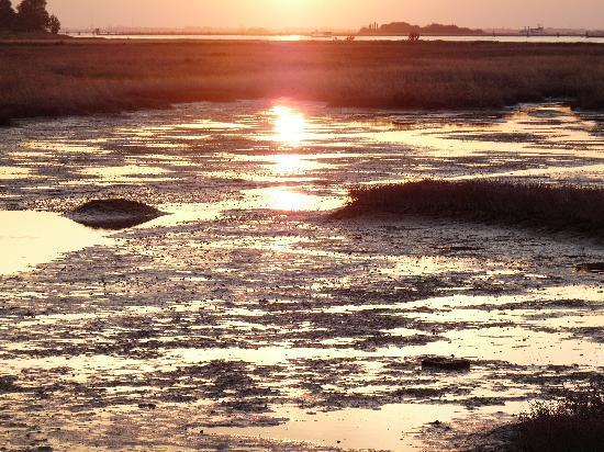 Locanda da Scarpa : Coucher de soleil sur la lagune