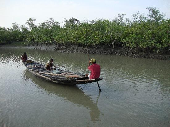 Dayapur Island, India: The mangrove jungle and local fishermen