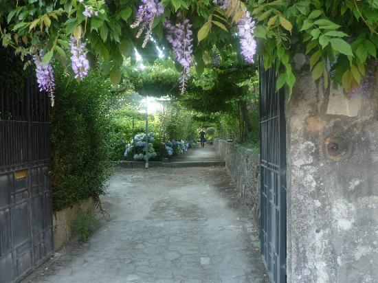 Casa Santa Filomena: The entrance