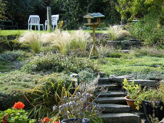 Well House B&B: Back garden