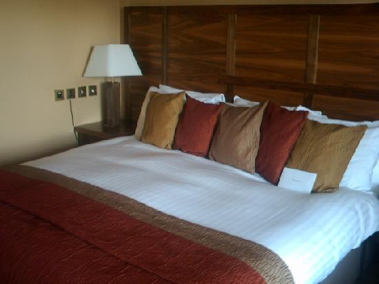 The Morley Hayes Hotel: Big, Comfy Bed!