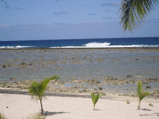 Magic Reef Bungalows: The beach & lagoon & reef at low tide