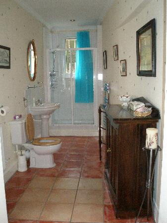 The Victorian Town House: Our bathroom