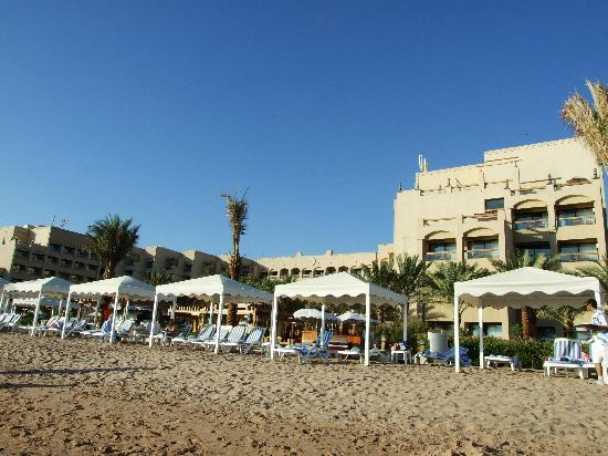 InterContinental Aqaba Resort: Lounge chairs in front of the beach.