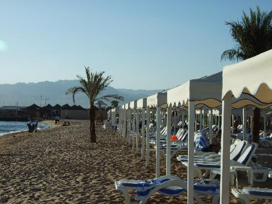 InterContinental Aqaba Resort: Lounge chairs at the beach.