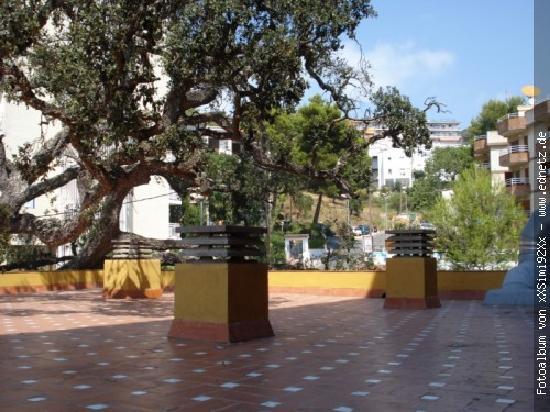 Santa Cristina Hotel : unsere Dachterasse