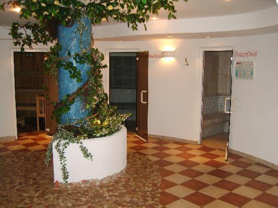 Naz-Sciaves, Ιταλία: angolo wellness