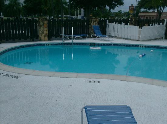 Kings Inn Palm Harbor: The Pool