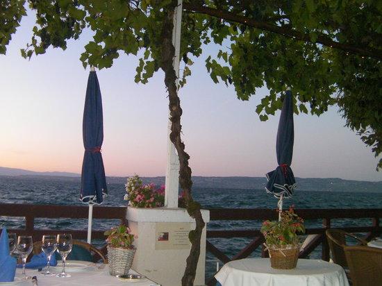 Hotel les Cygnes: la terrasse