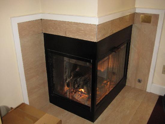 BEST WESTERN PLUS Elm House Inn : Fireplace in the room
