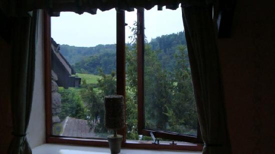 Parva Farmhouse Riverside Guesthouse : View from window