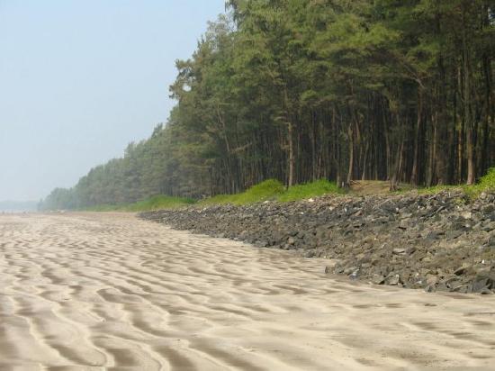 Nagaon, India: The beach alongside the property