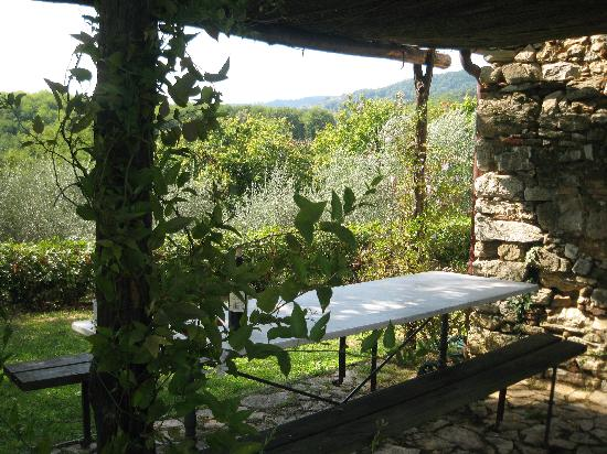 Podere Consani: Outdoor dining