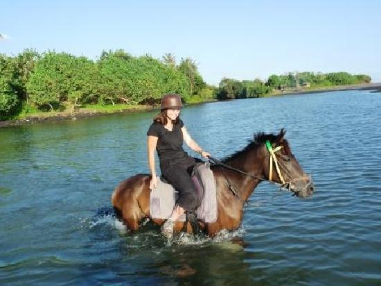 Tabanan, Indonezja: Ballade équestre au Bali Islande Horse