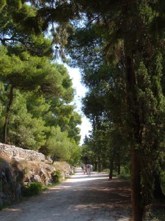 Marjan Park: One of the main paths on the hill