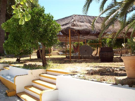 Hacienda el Huerto: le coin hamac
