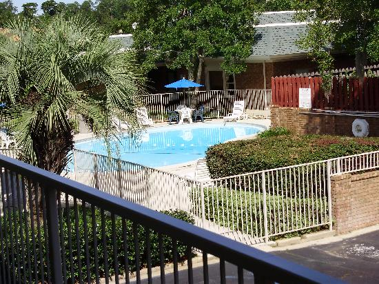 Motel 6 Tallahassee Downtown: The Pool