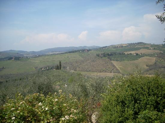 Tuscan Wine Tour by Italy and Wine: Fontodi Winery