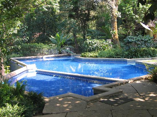 Club Mahindra Madikeri, Coorg: Tiny pool