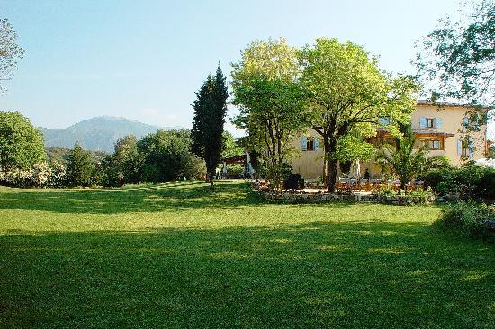 Le Mas Shabanou : The garden
