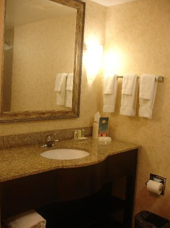 Holiday Inn Hotel & Suites Tallahassee Conference Center North: Bathroom