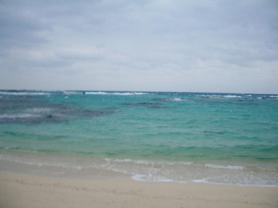 Sea Side Pension Blue Angel : ペンション直ぐそばの美しい海