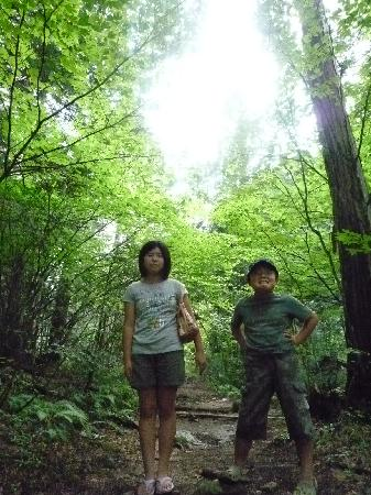 上松町, 長野県, 大いなる森に抱かれる