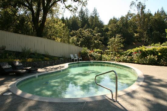 The Chanric Inn: Pool