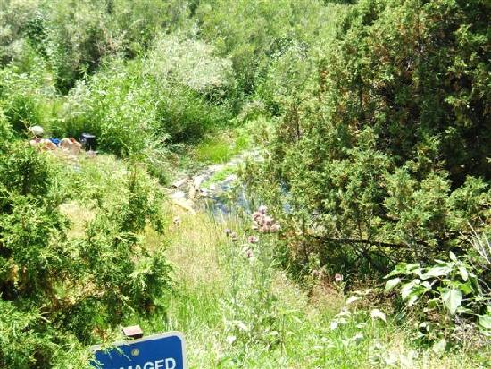 Orient Land Trust / Valley View Hot Springs: View of pool from the trail