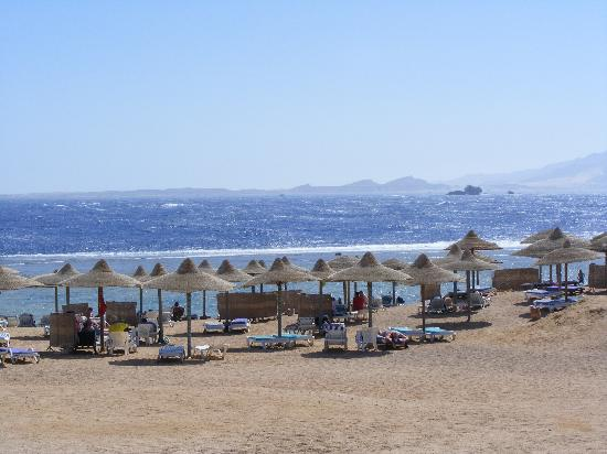Sea Gardens: Private beach shwing where the rollers stop at the start of the coral reef