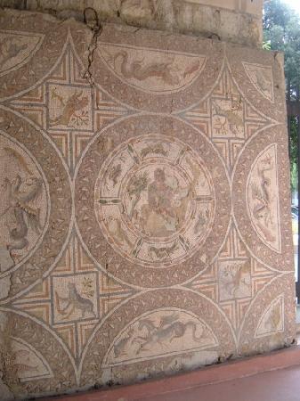Archaeological Museum Split: Orpheus Mosaic
