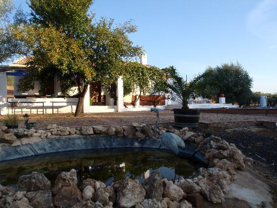 Casa Rural El Laderon: Estanque frente a la casa, con ranas y nenúfares