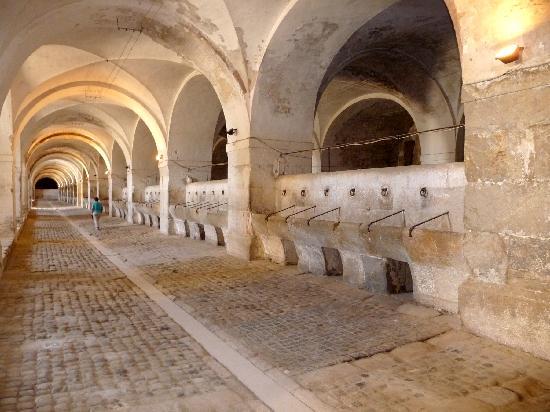 سيوتات دي جيرونا: Castell de Sant Ferran Stables