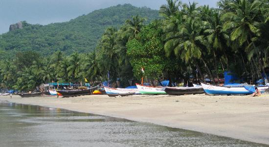 Palolem Beach Resort: Palolem beach