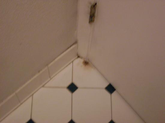 Baymont Inn & Suites San Antonio Near South Texas Medical CE: rust