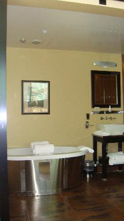 ماين آند سكاي: 1 of the bathrooms, tub fills from ceiling