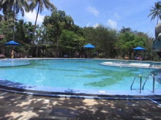 Siddhalepa Ayurveda Health Resort: プール