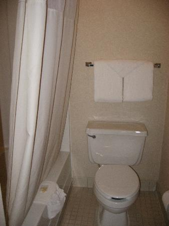 Quality Suites Hotel: bathroom