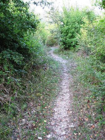 Hotel Le Pozze di Lecchi: the old stone road/path