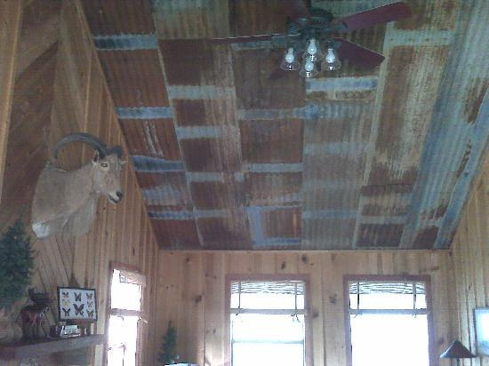 The Lodges at Lost Maples: Ceiling of Tree House