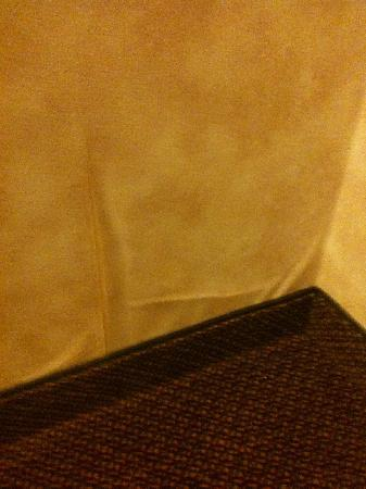 Quality Inn Christiansburg: Peeling Wallpaper