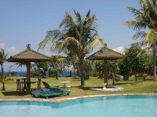 Emerald Tulamben Beach Hotel : Lovely pool