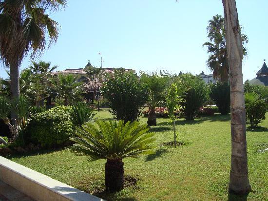 Saphir Hotel: garden small pice