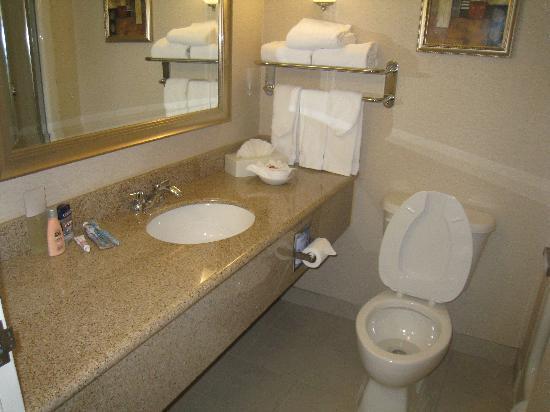 Admiral Inn & Suites: Clean Bath room