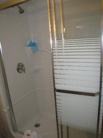 Admiral Inn & Suites: Shower
