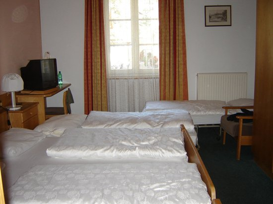 Hotel Orso Grigio : Stanza tripla + letto aggiunto